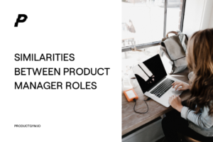 product manager roles